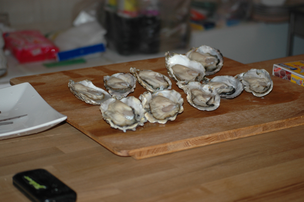 oyster_001