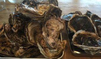 糸島サウンド&能登の真牡蠣、岩牡蠣