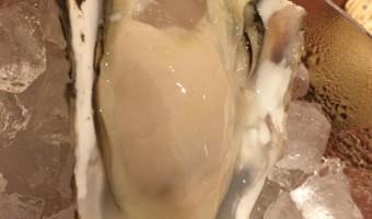 能登の真牡蠣、岩牡蠣が入荷しました〜^_^